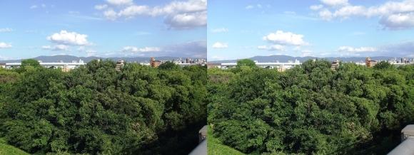 菅原城北大橋からの眺望①(平行法)