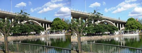 菅原城北大橋①(平行法)