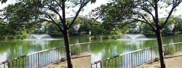 城北公園 大池①(平行法)