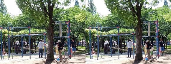 城北公園⑥(平行法)