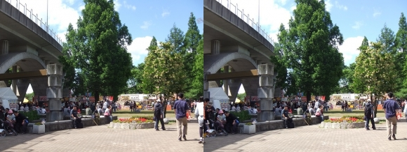 城北公園①(平行法)