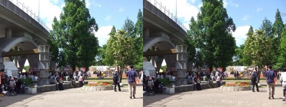 城北公園①(交差法)