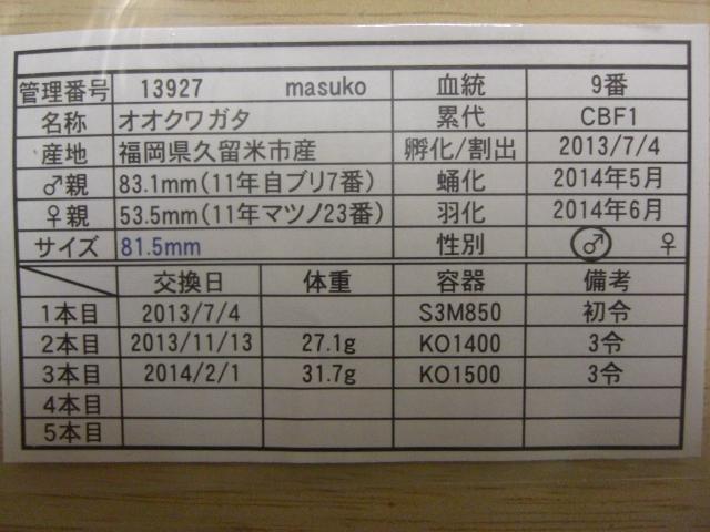 masuko13年9番(管理)