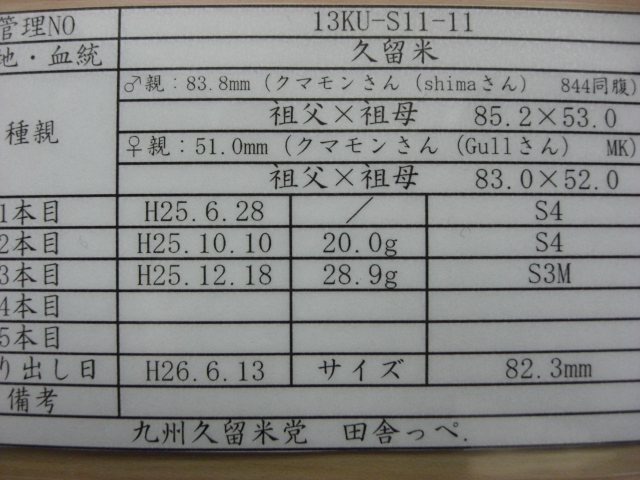 13KU-S11-11(管理)