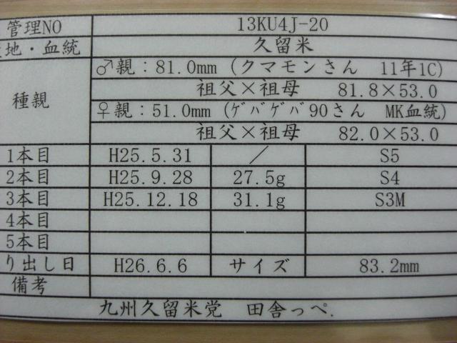 13KU4J-20(管理)