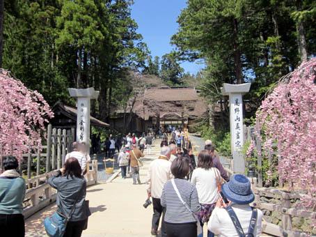 koyabuji4.jpg