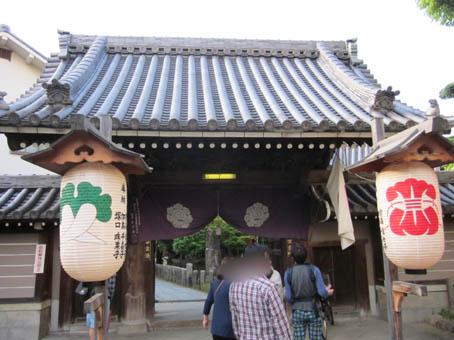 nodafuji3.jpg