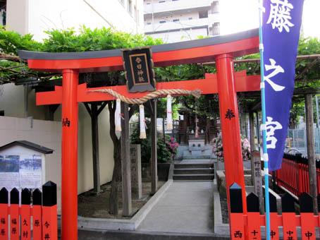 nodafuji8.jpg