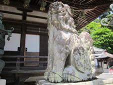 yokokuji4.jpg