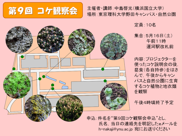 第9回コケ観察会ポスター