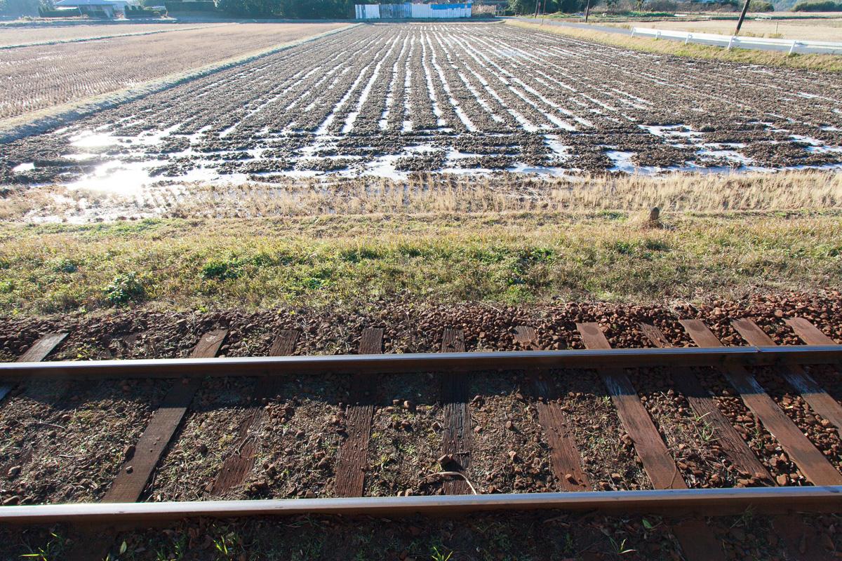 141219小湊鐵道1200 (2 - 1)-2