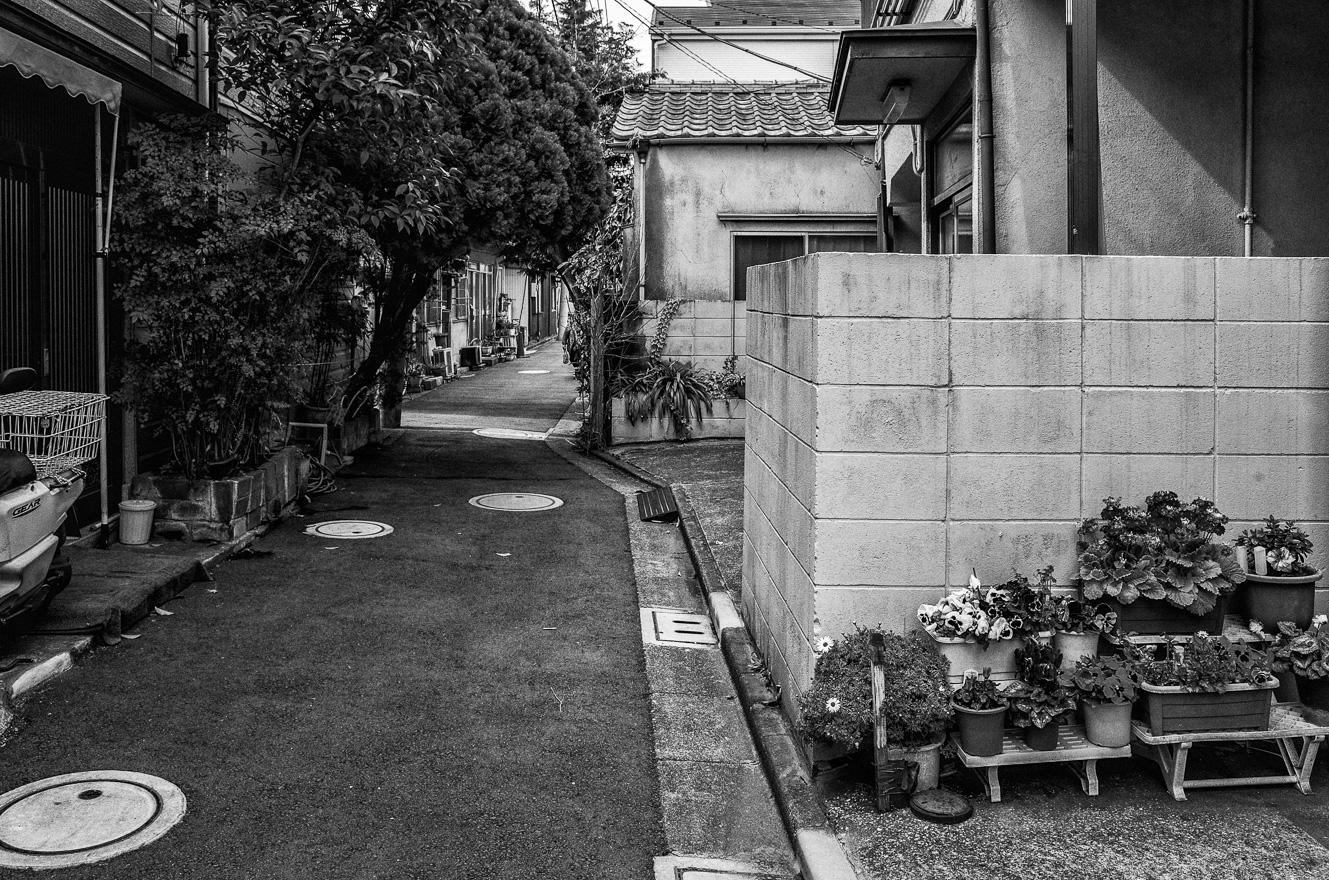 150318京島 (2 - 1)-2