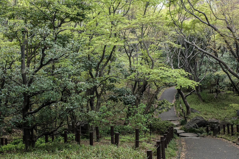 150404靖国神社 (2 - 1)-6