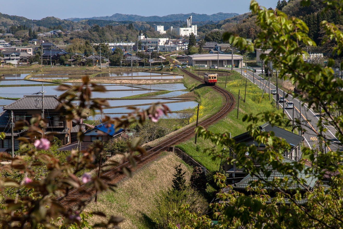 150416小湊鐵道 (2 - 1)