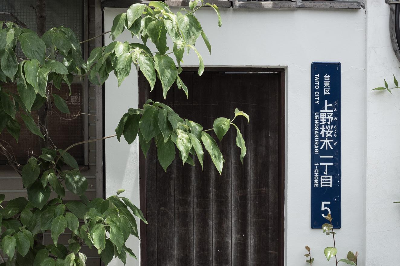 150602上野 (2 - 1)-6