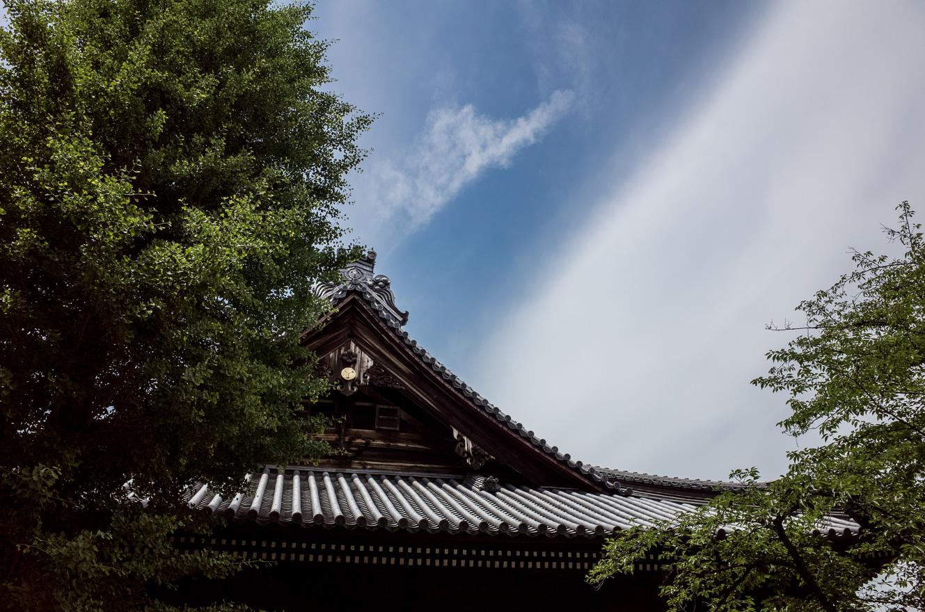 150602上野 (2 - 1)-28