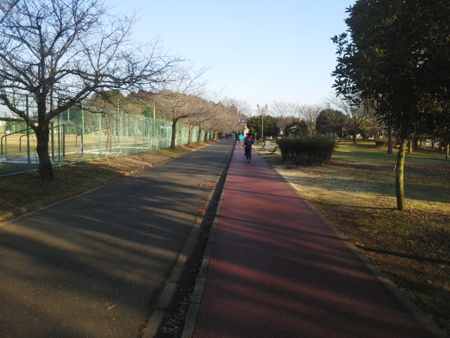141231運動公園2