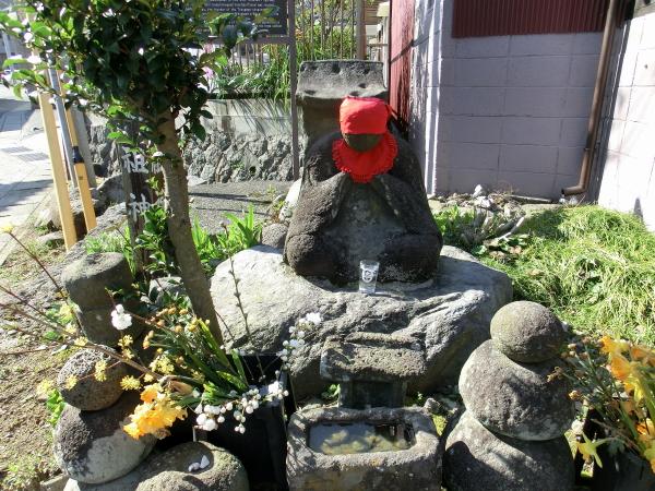 150330 小田原春の花0019
