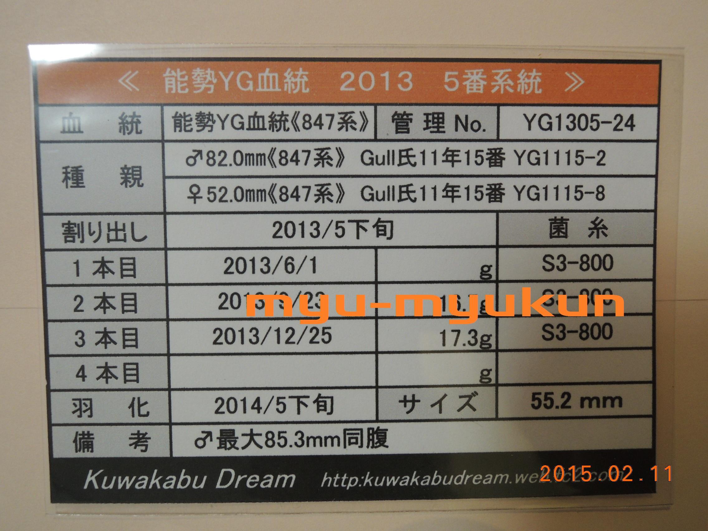 M1305♀管理表