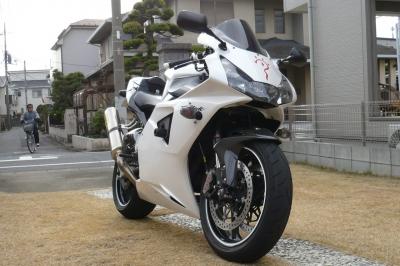 P1020089z.jpg