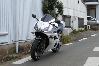 P1020091z.jpg