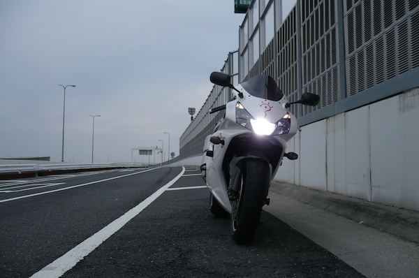 P1030367z.jpg