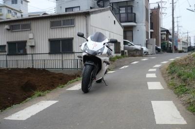 P1030374z.jpg