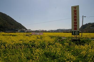 IMGP2801.jpg