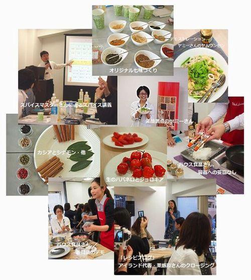 spice_seminar2.jpg