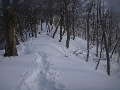 新雪(3)