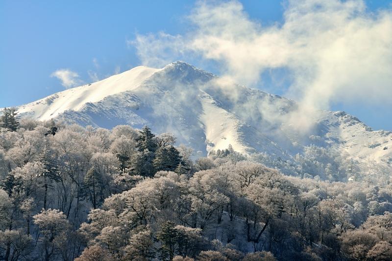 次郎笈(ジローギュウ)冬景  (徳島県次郎笈)