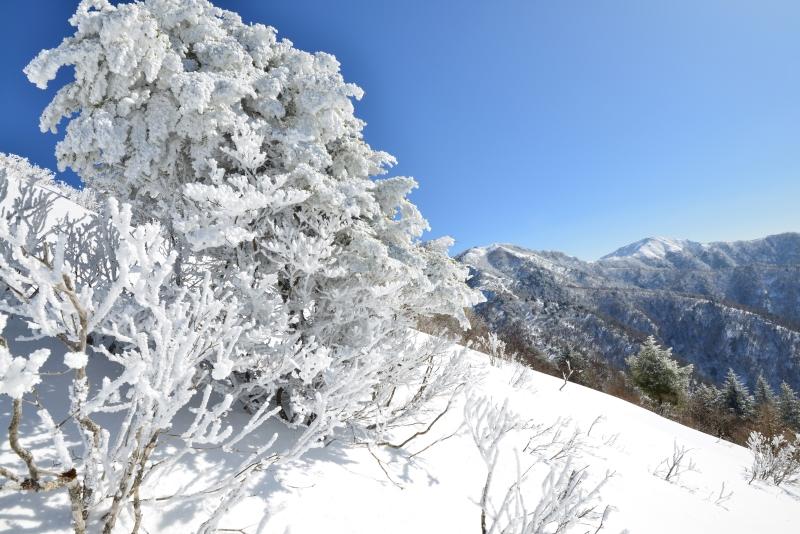樹氷と剣山・次郎笈  (徳島県)