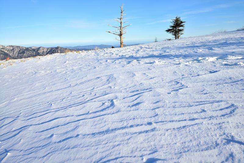 雪原の風紋 (徳島県丸笹山頂)