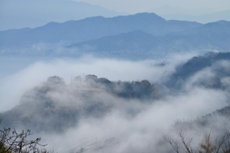 「霧のさぬき里山1」 (香川県庵治町)