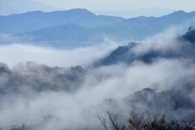 「霧のさぬき里山2」 (香川県庵治町)