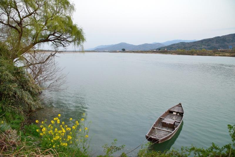 「菜の花咲く川辺」 (徳島県阿波市)
