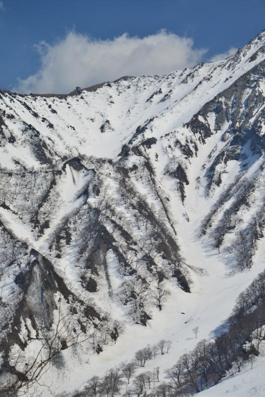 「大山冬景6」  (鳥取県大山)