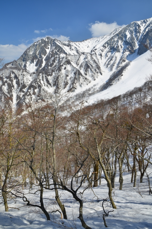 「大山冬景7」  (鳥取県大山)