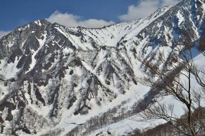 「大山冬景8」  (鳥取県大山)