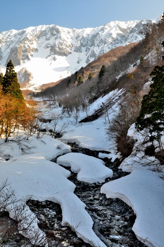 「大山冬景10」  (鳥取県大山)