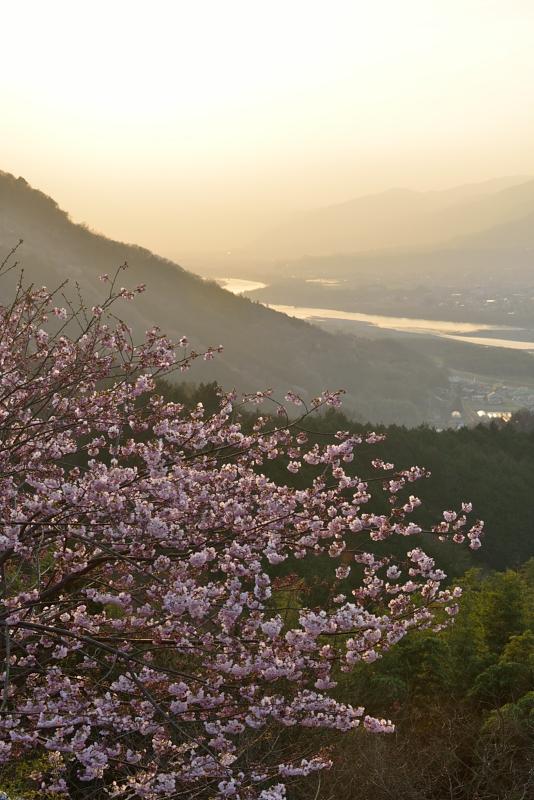 「暮れゆく吉野川」  (徳島県つるぎ町)