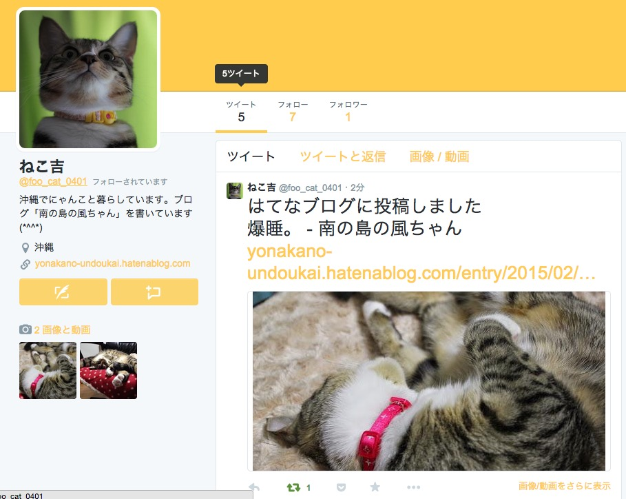 foo_cat_0401.jpg