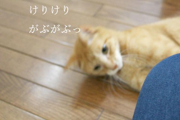 20150528_19.jpg