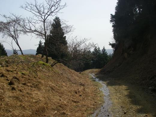 _hodosu146.jpg