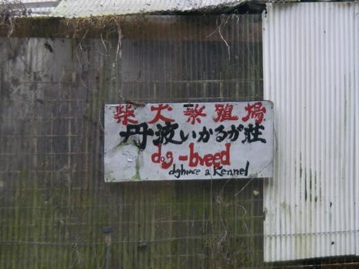 _nanade46.jpg