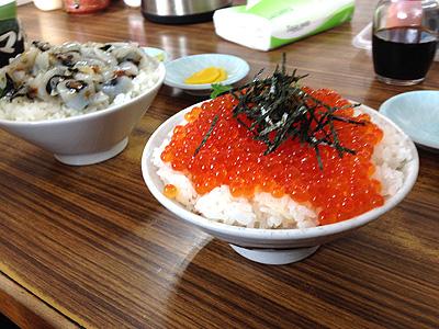 マルトマ食堂ウニイカ丼