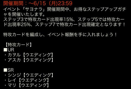 eva_2015_wok_7_s_01065.jpg