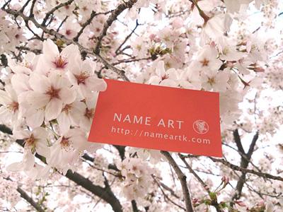 美しい桜とコラボ