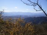 宝登山山頂(2)jpg