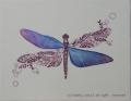 夕暮れの蜻蛉